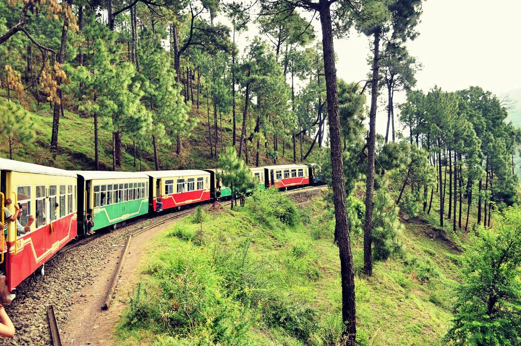 toy train ride family trip india