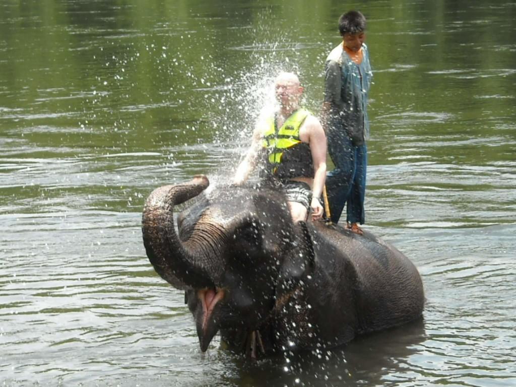 Elephant Bathing Goa