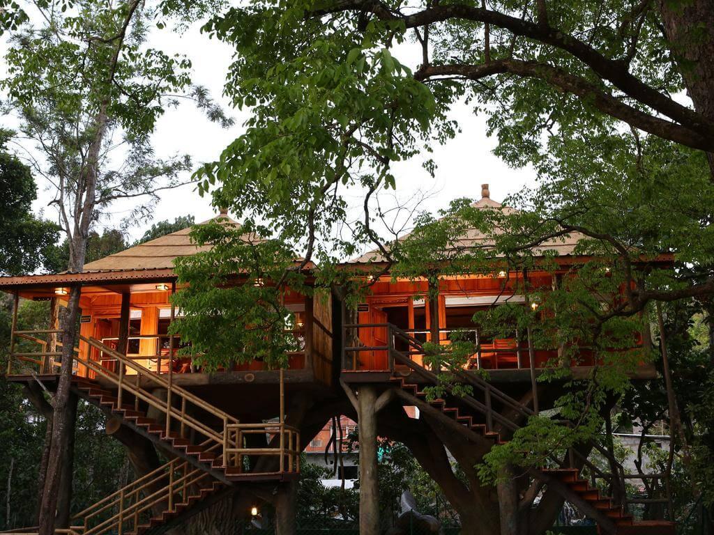 Machan Treehouse, Maharashtra