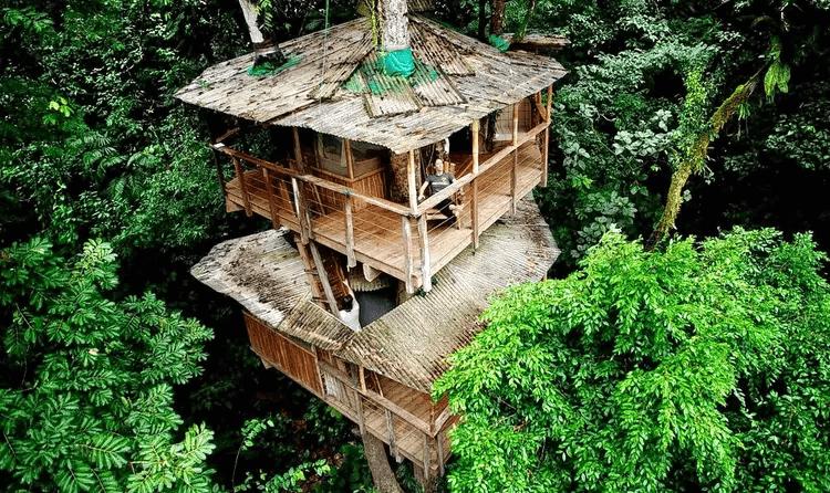Safari Land Resort