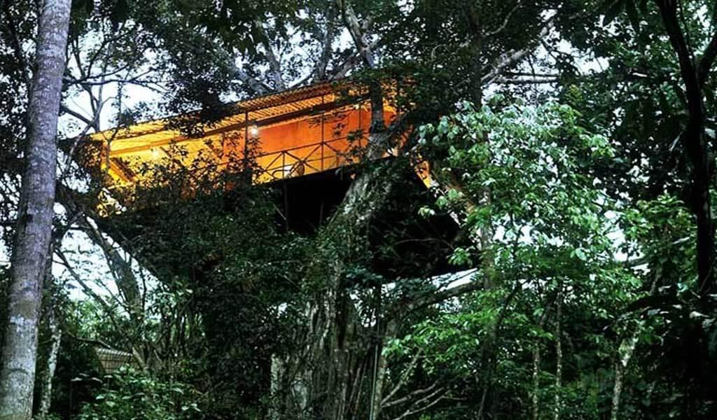 Vythiri Tree Resort, Kerala