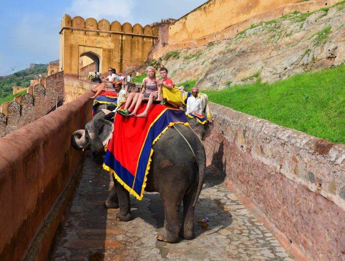Jaipur Amber Fort Elephant Ride Family Tour India