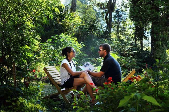 Munnar Honeymoon