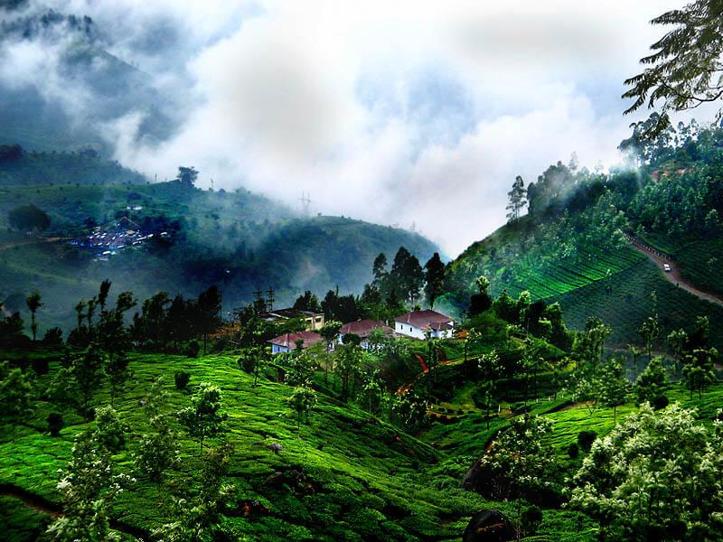 Munnar During Rainy Season