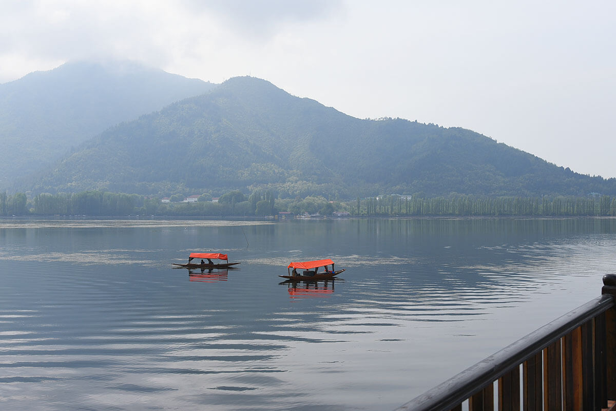 Shikaras Dal Lake, Kashmir