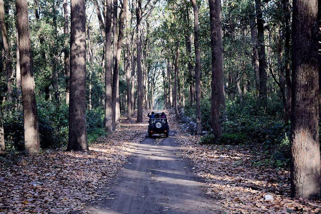 Jeep Safari Hemis National Park