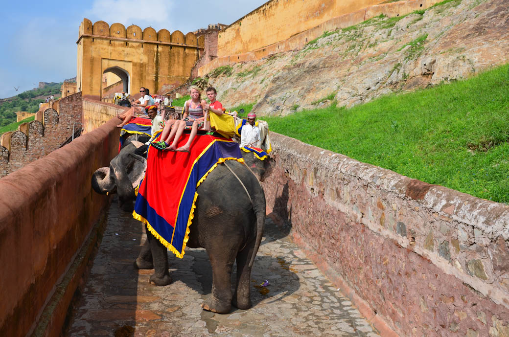 Jaipur Amber Fort Elephant Ride with Kids