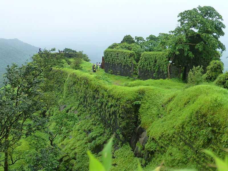 Karnala in Monsoon