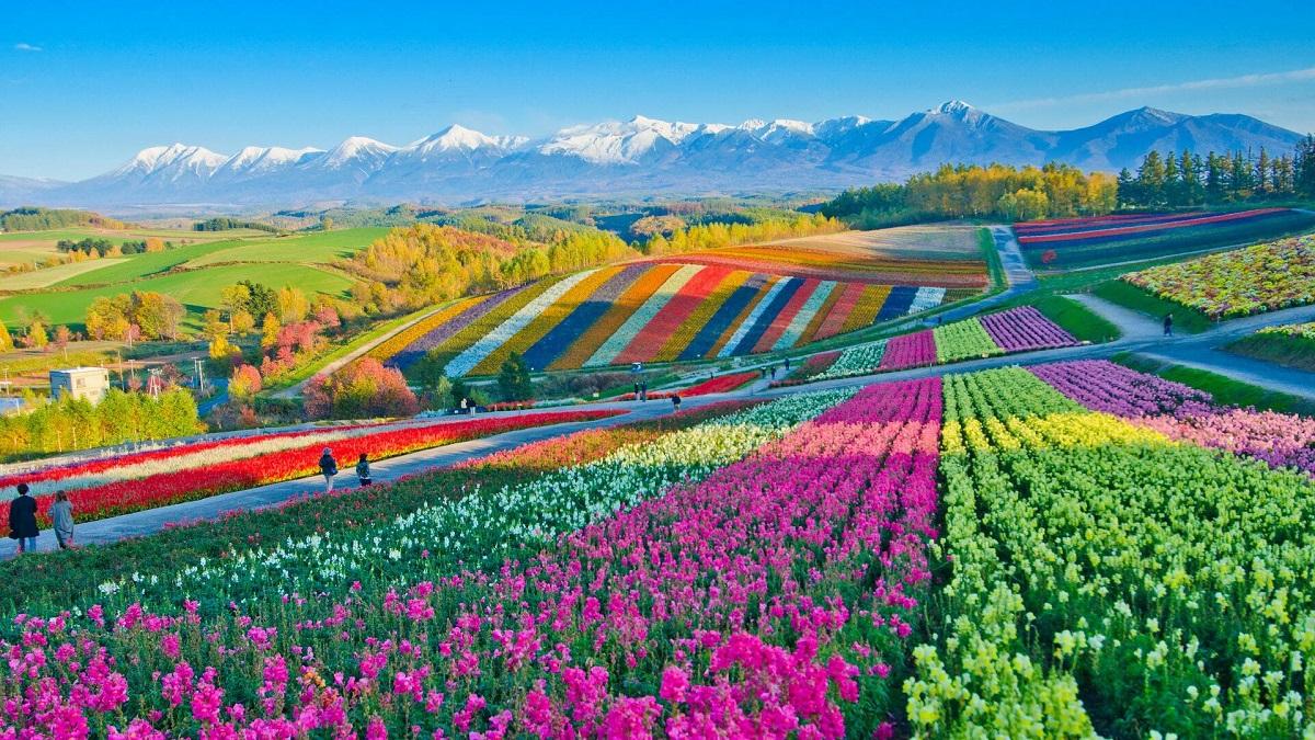 The Hokkaido Scenic Byway to Japan