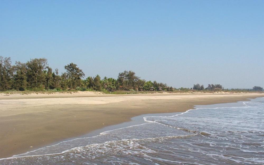Morjim Beach Goa